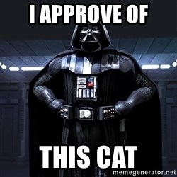 Bitch Darth Vader - I APPROVE OF  This cat