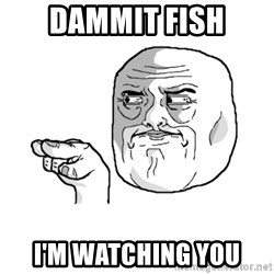 i'm watching you meme - dammit fish i'm watching you