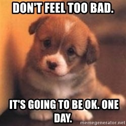 cute puppy - don't feel too bad.  IT'S GOING TO BE OK. ONE DAY.