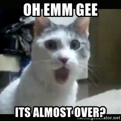 Surprised Cat - OH emm gee Its Almost over?