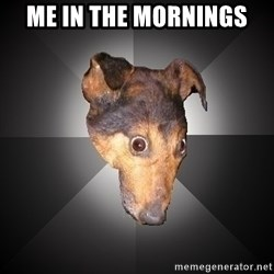 Depression Dog - me in the mornings
