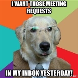 Business Dog - I want those meeting requests IN MY INBOX YESTERDAY!