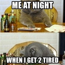 Poker Cat - me at night when i get 2 tired