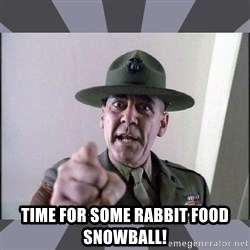 R. Lee Ermey -  time for some rabbit food snowball!