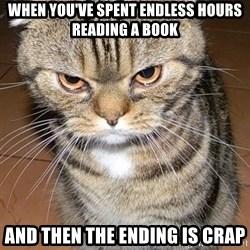 angry cat 2 - When you've spent endless hours reading a book and then the ending is crap