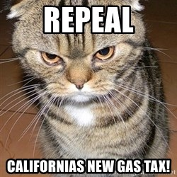 angry cat 2 - Repeal Californias new gas tax!
