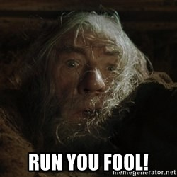 gandalf run you fools closeup -  RUN YOU FOOL!