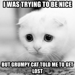 Sadcat - i was trying to be nice but grumpy cat told me to get lost