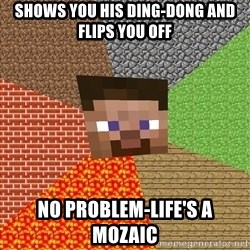 Minecraft Guy - shows you his ding-dong and flips you off no problem-life's a mozaic