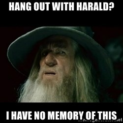 no memory gandalf - hang out with harald? i have no memory of this