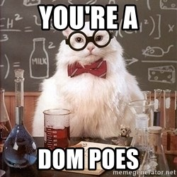 Science Cat - You're a Dom poes