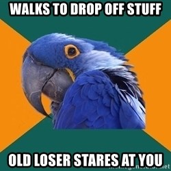Paranoid Parrot - walks to drop off stuff old loser stares at you