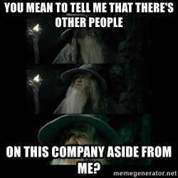 Confused Gandalf - you mean to tell me that there's other people on this company aside from me?
