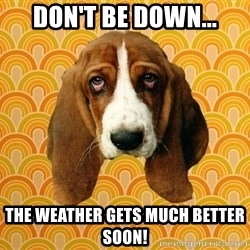 SAD DOG - don't be down... the weather gets much better soon!