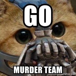 bane cat - GO Murder team