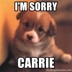 cute puppy - I'm sorry Carrie