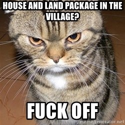 angry cat 2 - house and land package in the village? fuck off