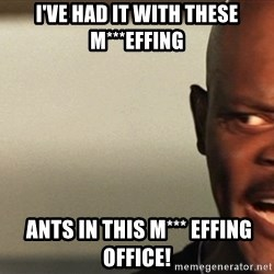 Snakes on a plane Samuel L Jackson - I've had it with these M***EFFING  ANTS in this m*** effing office!