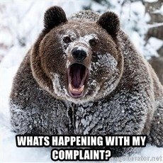 Cocaine Bear -  whats happening with my complaint?