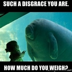 Overlord Manatee - such a disgrace you are. how much do you weigh?