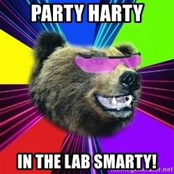 Party Bear - PARTY HARTY IN THE LAB SMARTY!