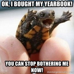 angry turtle - Ok, I bought my yearbook! You can stop bothering me now!