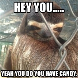 Creepy Sloth Rape - hey you..... yeah you do you have candy.