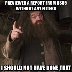 Hagrid - previewed a report From DS05 without any filters I should Not Have DOne That