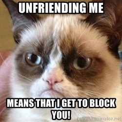 Angry Cat Meme - Unfriending me Means That I get to Block You!