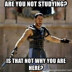 GLADIATOR - Are you not studying? Is that not why you are here?