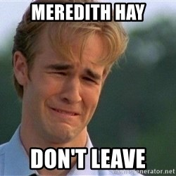 Crying Man - Meredith Hay Don't Leave
