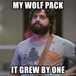 Alan Hangover - My wolf pack it grew by one