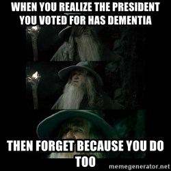 Confused Gandalf - When you realize the president you voted for has dementia Then forget because you do too