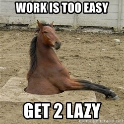 Hole Horse - Work is too easy get 2 lazy