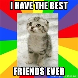 Cute Kitten - i have the best  friends ever
