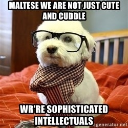 hipster dog - Maltese we are not just cute and cuddle wr're Sophisticated Intellectuals