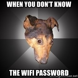 Depression Dog - when you don't know the wifi password