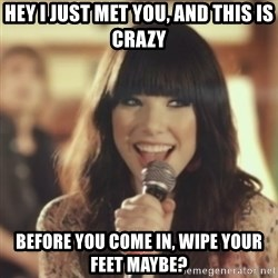 Carly Rae Jepsen Call Me Maybe - Hey I just met you, and this is crazy before you come in, wipe your feet maybe?