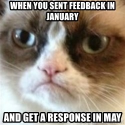 angry cat asshole - when you sent feedback in january and get a response in may