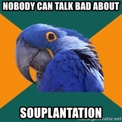 Paranoid Parrot - nobody can talk bad about souplantation
