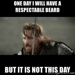 But it is not this Day ARAGORN - one day i will have a respectable beard but it is not this day