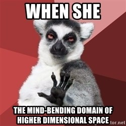 Chill Out Lemur - when she  the mind-bending domain of higher dimensional space