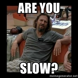 The Dude - ARE You SLOW?