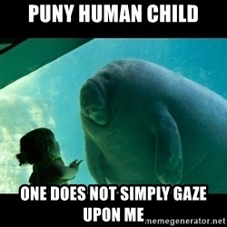 Overlord Manatee - Puny human child One does not simply gaze upon me