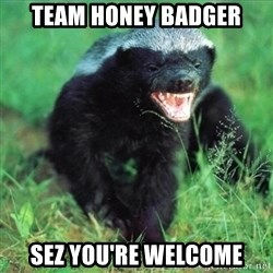 Honey Badger Actual - Team honey badger sez you're welcome