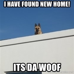 Roof Dog - I Have Found NEW HOME! ITS DA WOOF