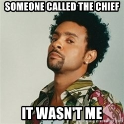 Shaggy. It wasn't me - Someone called the Chief it wasn't me
