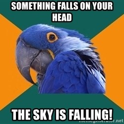 Paranoid Parrot - Something falls on your head The sky is falling!