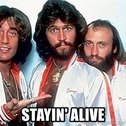 beegees -  STAYIN' alive