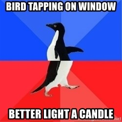 Socially Awkward to Awesome Penguin - Bird tapping on window  Better light a candle
